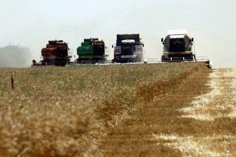 КНДР планирует арендовать более 10 тыс. га земли в Хабаровском крае для сельхозработ